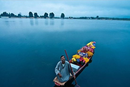 4-Days Srinagar -Gulmarg Heart of