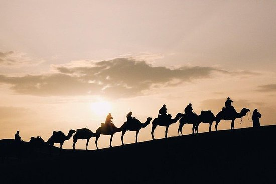 Desert Sunset Camel Ride With Free...