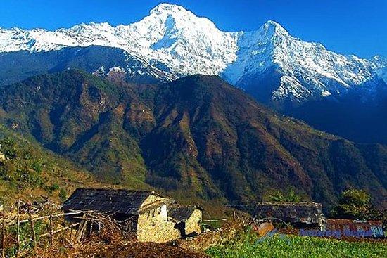 Acampamento Base de Annapurna Curto
