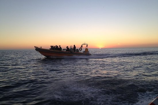 Speedboat-Sonnenuntergang-Touren