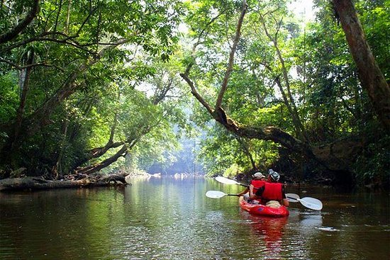 Ultimate Adventure Sarawak Borneo...