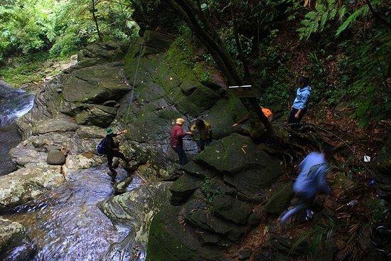 Bach Ma national park trekking 2D1N...