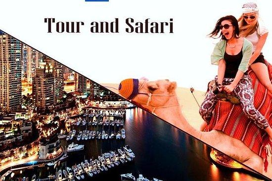 Excursión por la ciudad de Dubái y...