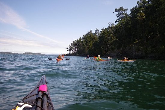 2 horas de Swartz Bay Kayak Tour y...