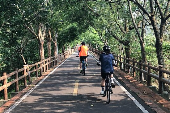 Leisure Cycling Experience & Gaomei...