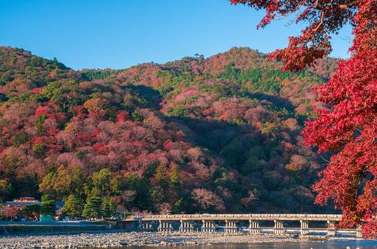 7時間の京都のプライベートツアー:金閣寺などの有名な寺と嵐山を巡るツアー
