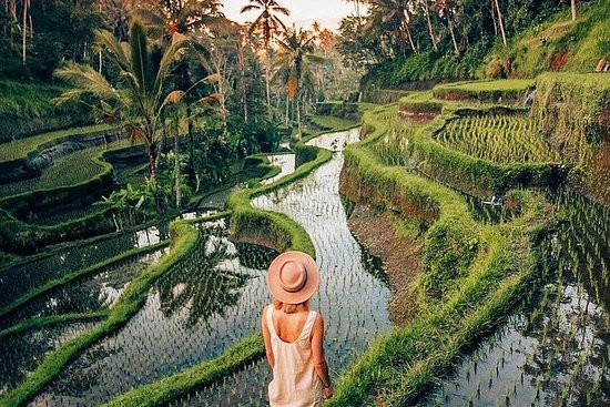 Ubud Day Trip med Private & Friendly...