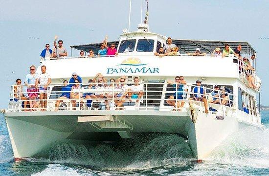 Whale Watching eventyr fra Panama City