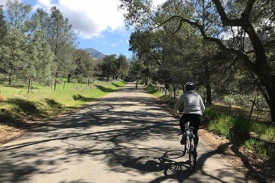 Wine Country Half Day Bike Tour