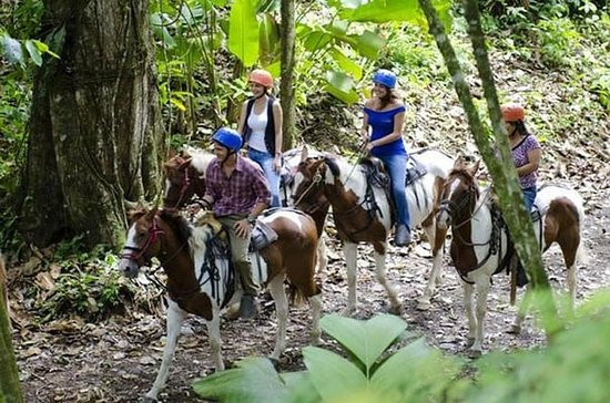 Horseback riding and cultural Maleku...