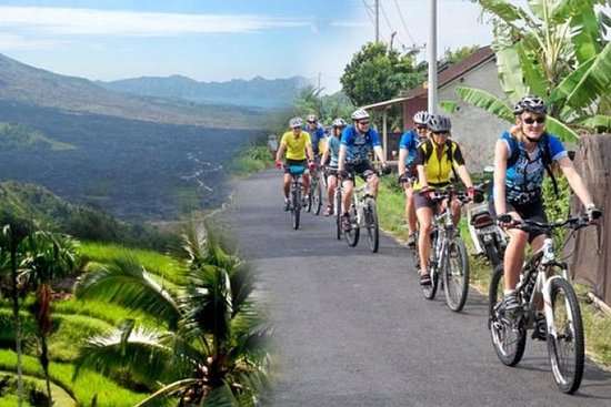 Best Kintamani - Ubud Bali Bicycle Tours