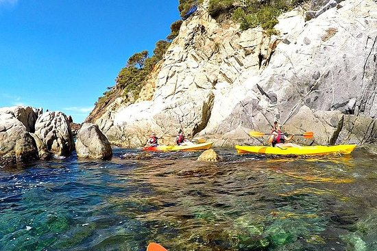 Kayak along the spectacular Costa...