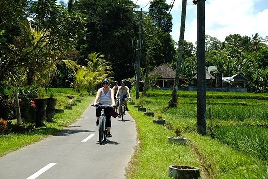 Best Ubud Cycling & Swing with...