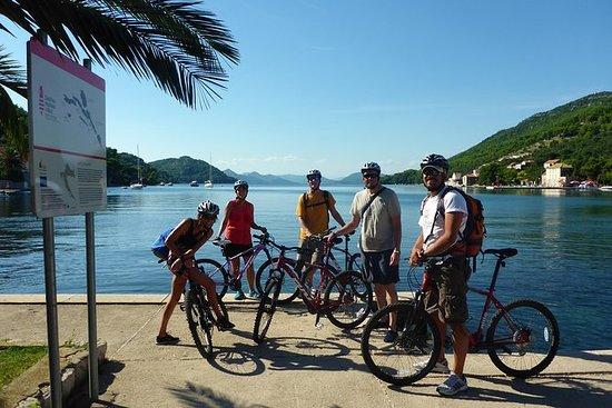 エラフィート諸島ドブロブニクからの終日カヤックと自転車ツアー