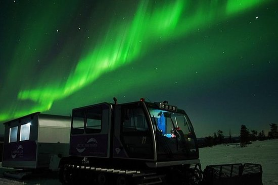 Northern Lights Photography Tour mit ...