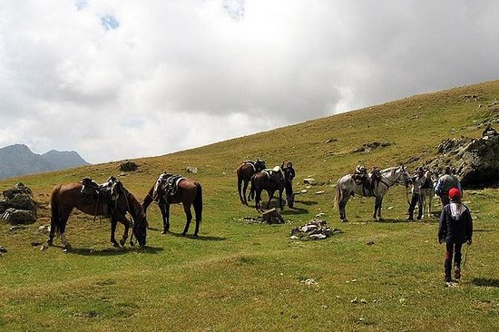Rila Trail Riding für erfahrene Reiter