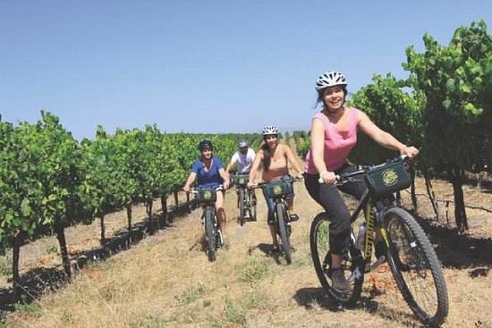 Cycling in the Vineyards Off-Road...
