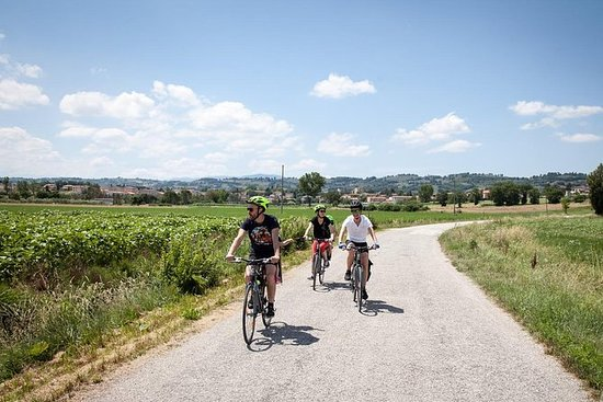 Umbria Bike & Wine Day Tour