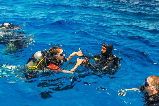 PADI Discover Scuba Diving from...