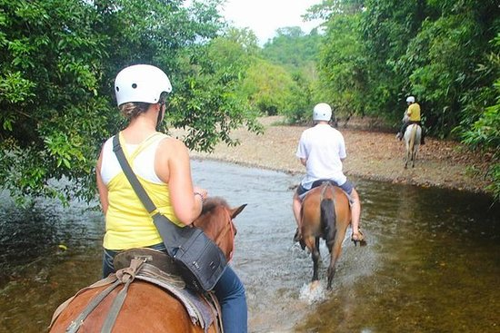 Golfito a cavallo