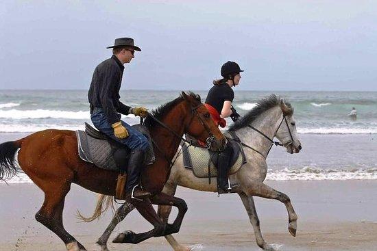 Geniet van 2 uur paardrijden op het ...