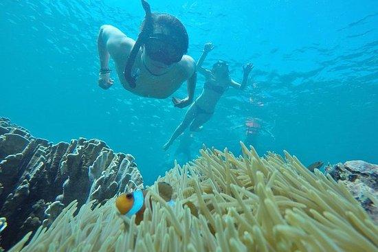 Phuket - Phi Phi - Maya - Bambu...