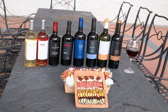 Visite dégustation de vin, singani et...