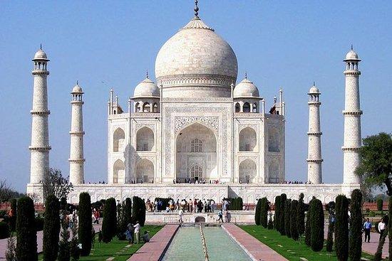 delhi tajMahal Agra fort delhi por LP...