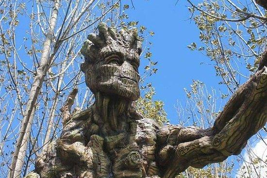 Økologiske Park af baby Groot og Ents