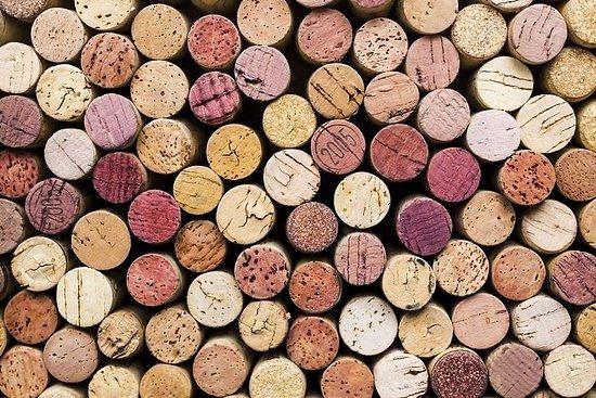 Weingötter von Istrien