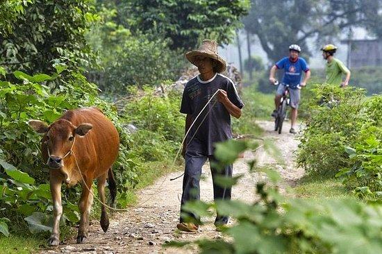 1 day Yangshuo Countryside Cycling...