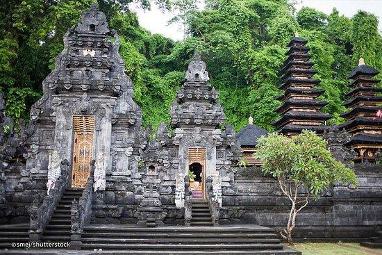 Tours privados: Kertagosa, Templo de...