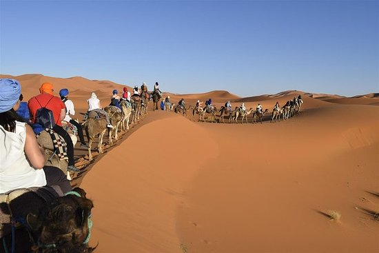 Sahara Desert Tours from Marrakech 3...