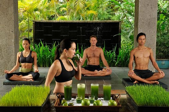 A Wellness Day at The Farm