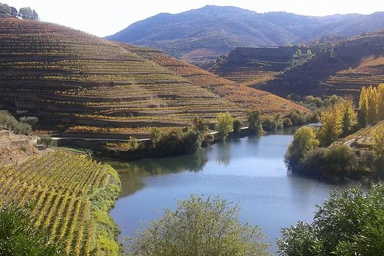 Douro Valley Régua-Pinhão with boat trip