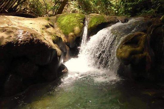 Mayfield Falls natur tur