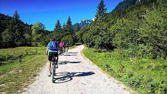 Tour de bicicleta de montaña y...