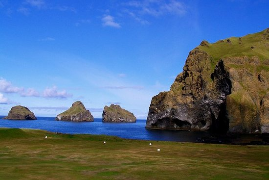 Westman Islands Day Tour from...