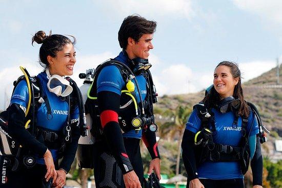 Essayez la plongée sous-marine