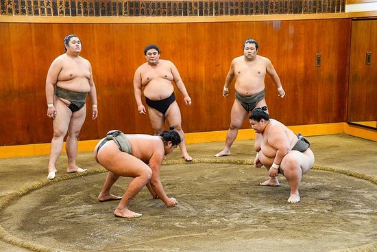 Assista Sumo Morning Practice na Casa...