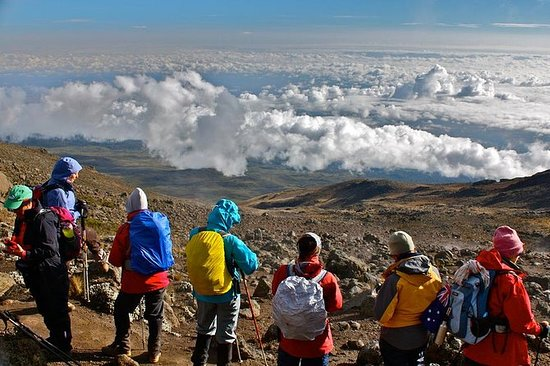 8 Days Kilimanjaro Climbing - Lemosho...