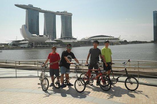 Bicicletas y mordiscos