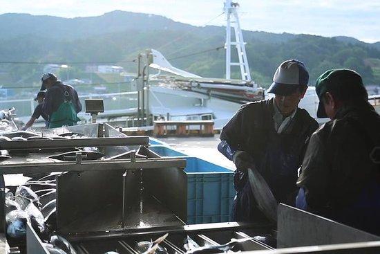 Guided Tour of Kesennuma Fish Market