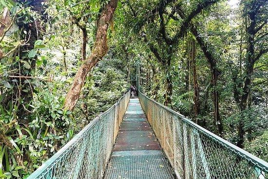 Gita di un giorno a Monteverde con