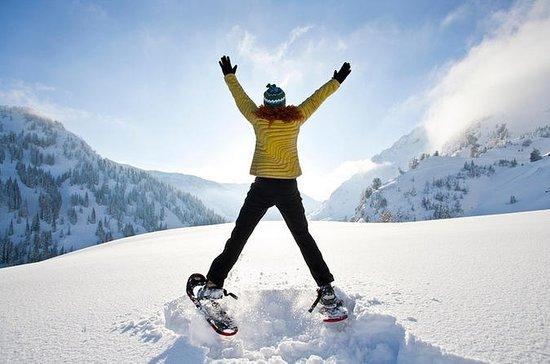 Snowshoeing Tours nas Dolomitas