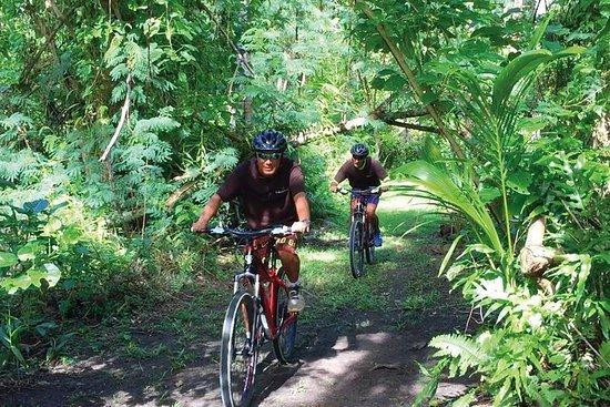 Bike, Hike, and Snorkel