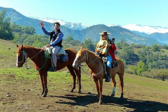 CAJON DEL MAIPO: Paseo a caballo por...