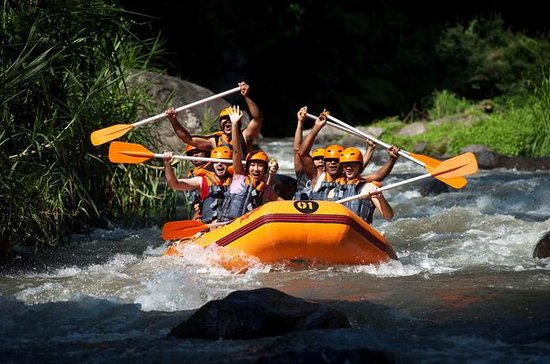 Bali Toekad Ayung River Rafting