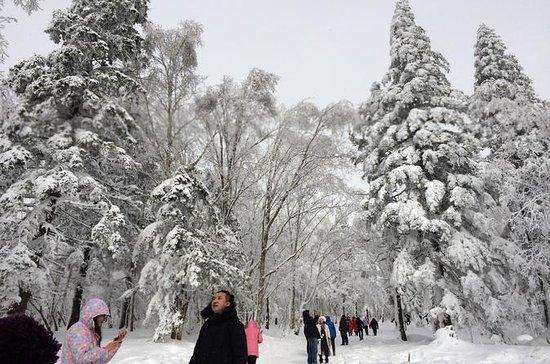 Traslado privado a la ciudad nevada...