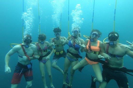 2-Dive SNUBA Islas Catalina a las...